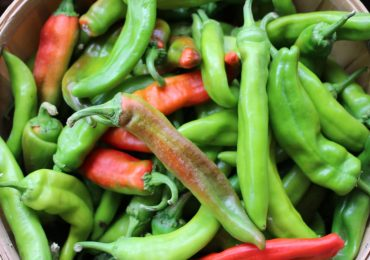 Amazing Health Benefits of Green Chillies