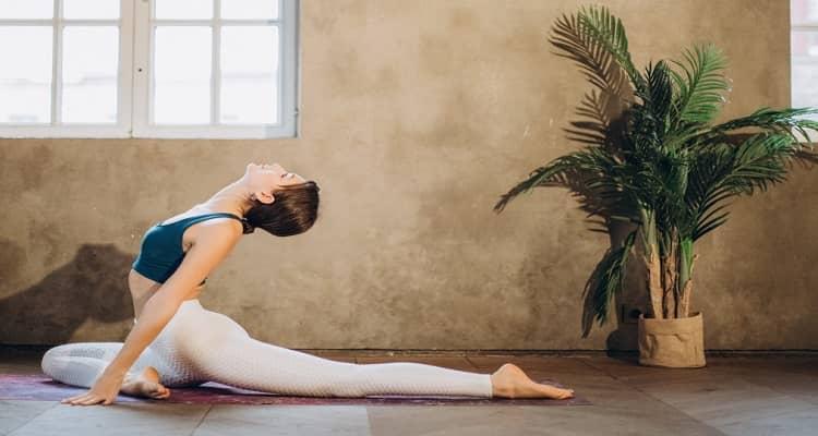 Bodily Flexibility