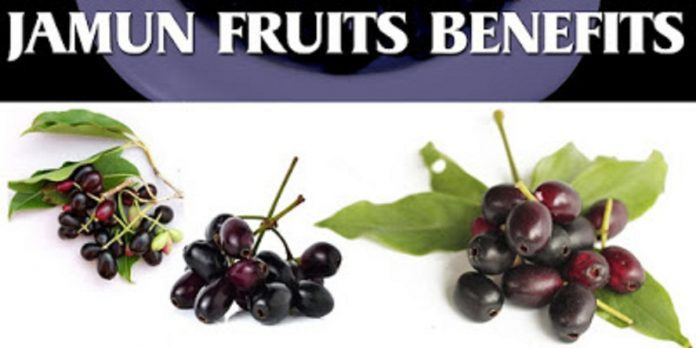 black-jamun-java-plum-health-benefits