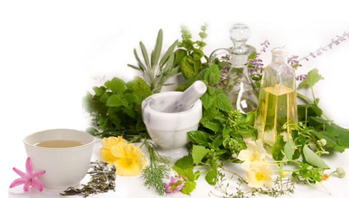 weight loss herbal products