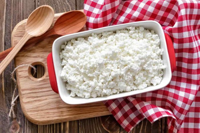 cottage cheese health benefits