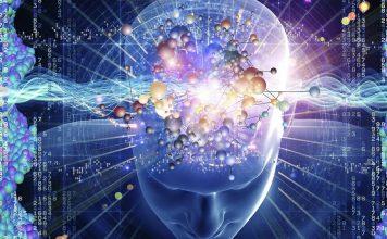 mind power foods