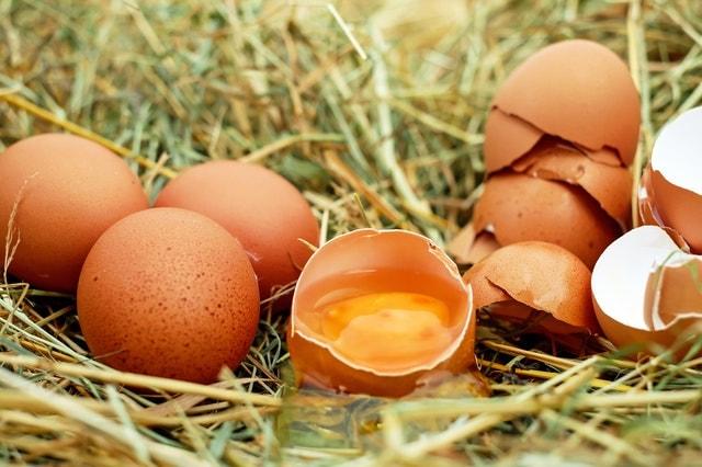 Egg Pack